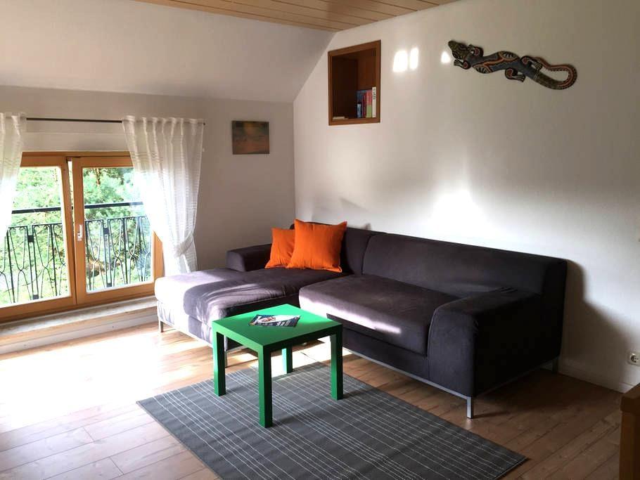 2-Zimmer-Wohnung großer Balkon - Krumbach (Schwaben)