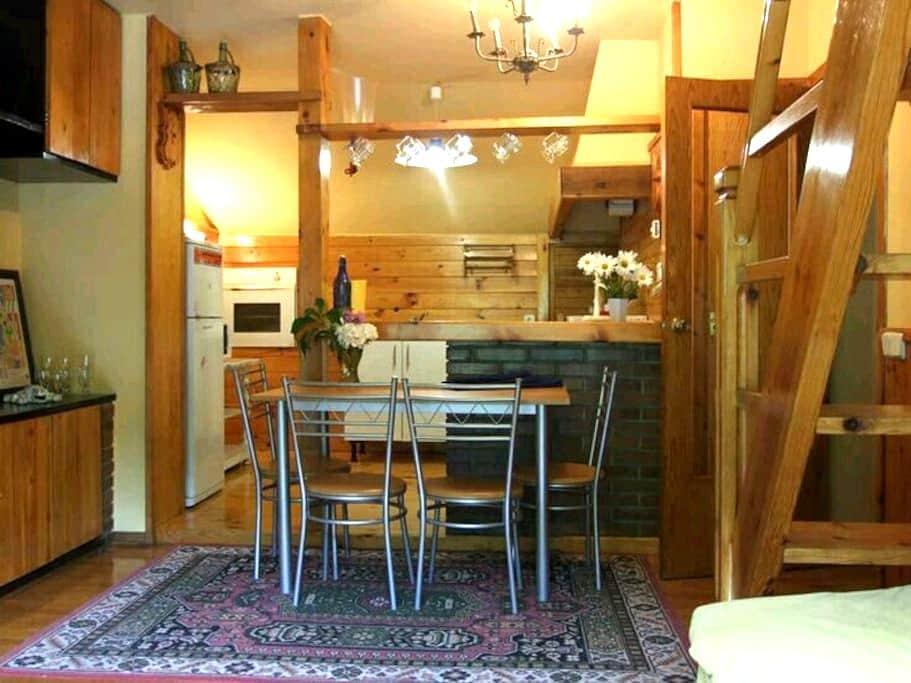 Alegre y bonito ático con wiffi - Vielha - Apartamento