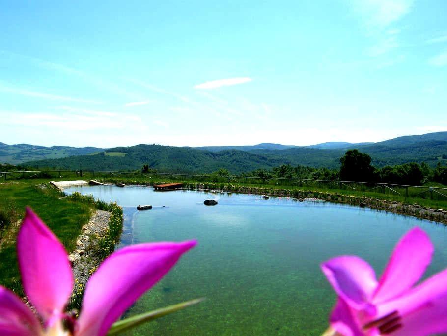 Green Loft, Montecastelli Pisano, Tuscany!! - Castelnuovo di Val di Cecina - Loft