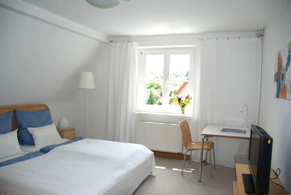 Kleine, feine Dachgeschosswohnung - Dresden - Appartement