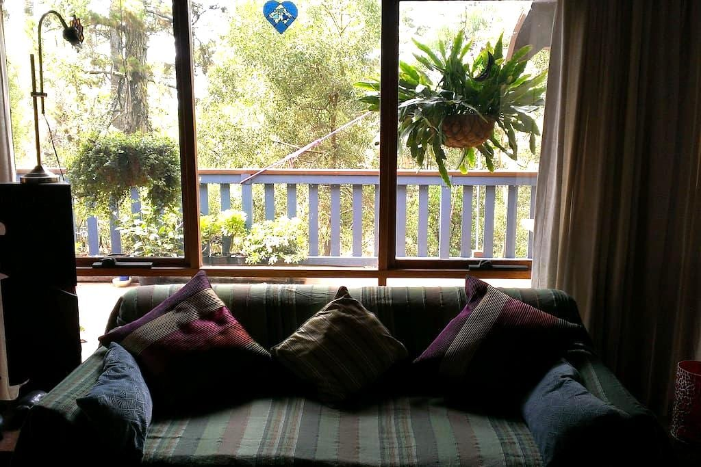 Rooms in lovely Blue Mountains home - Mount Victoria - Huis