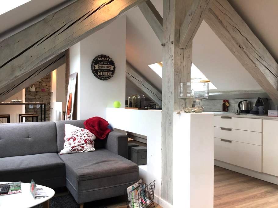 t3 hyper centre dernier etage - Grenoble - Apartment