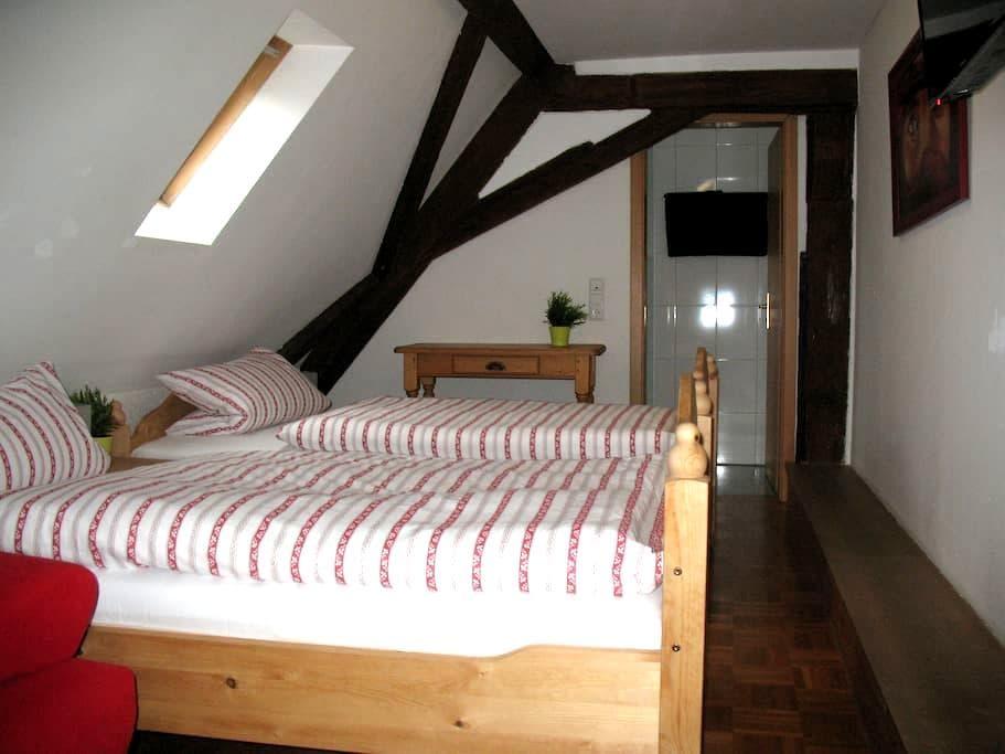 DG-Zimmer 3 im alten Fachwerkhaus - Bodenheim - House