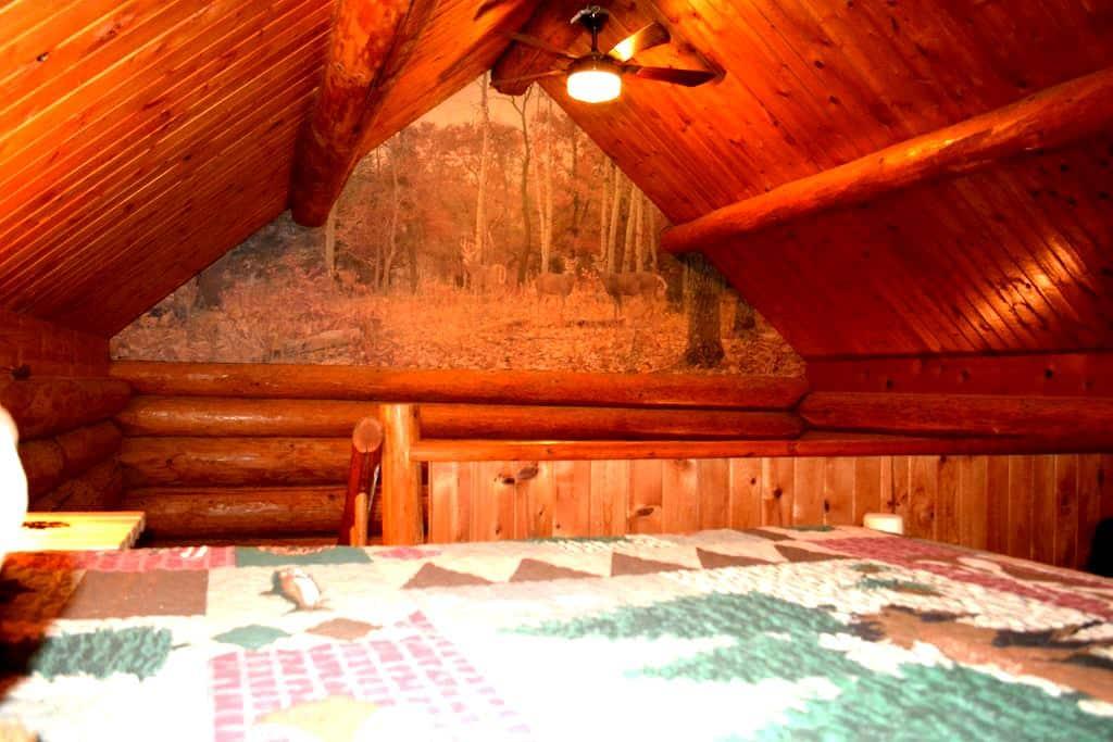 Cabin in The Wildwood - Chehalis - Casa