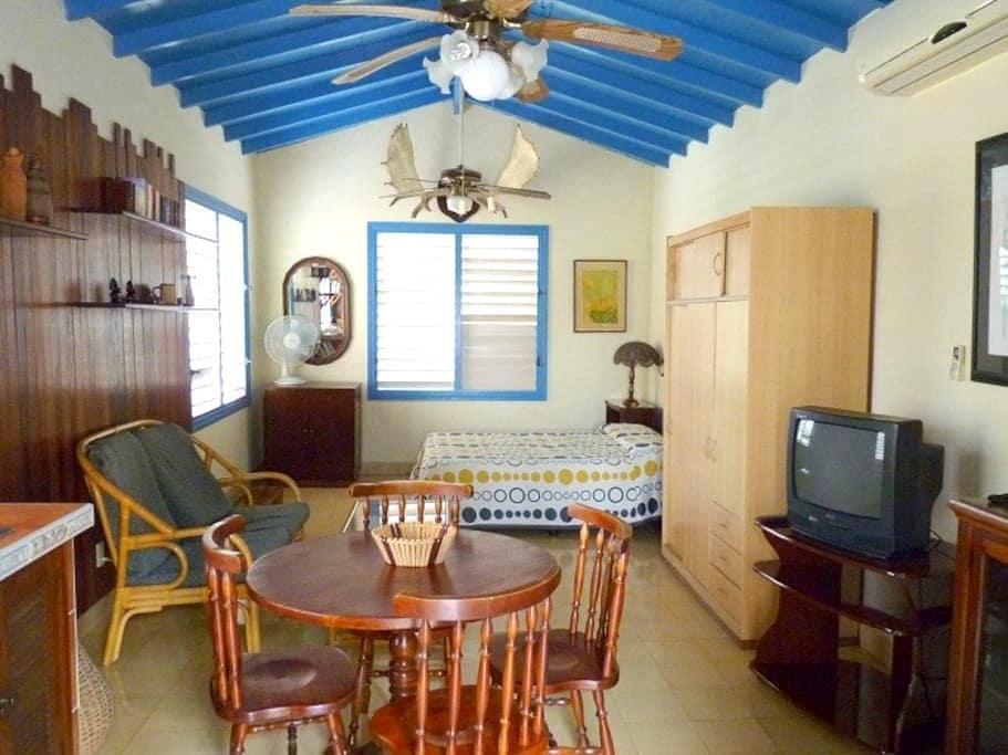 Casa Alicia - Studio, La Habana. - La Habana - Lägenhet