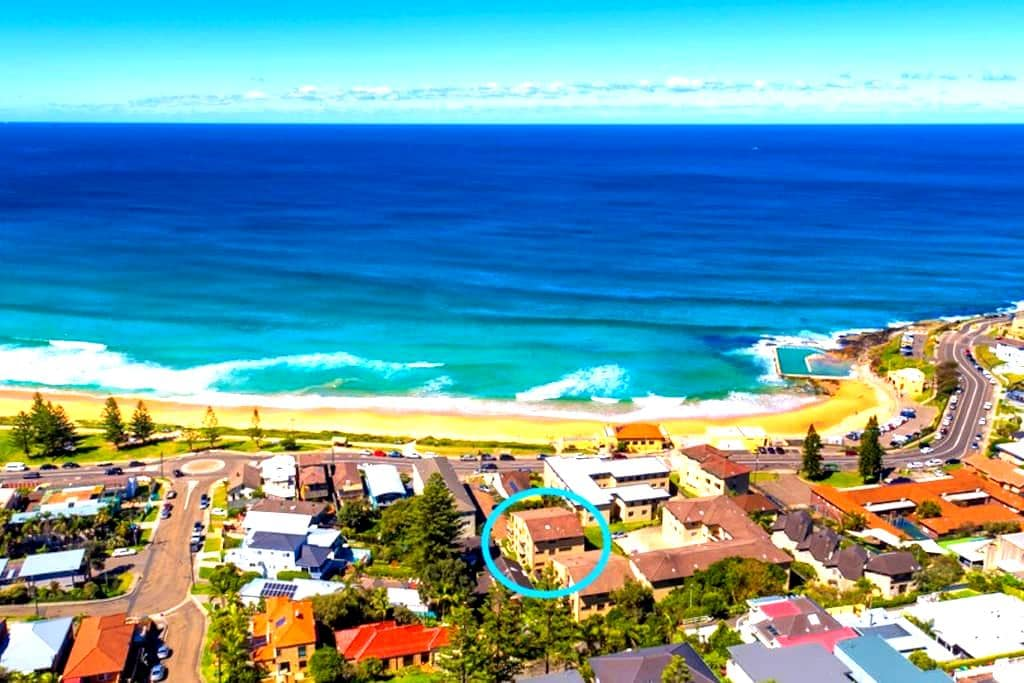 Beach front Apartment CURL CURL ..close to Manly - Curl Curl - Apartmen