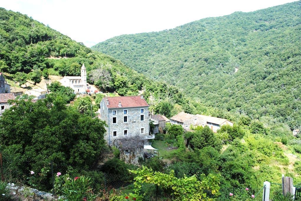Chambre d'hôte Corse du Sud n°2 - Zoza - Bed & Breakfast