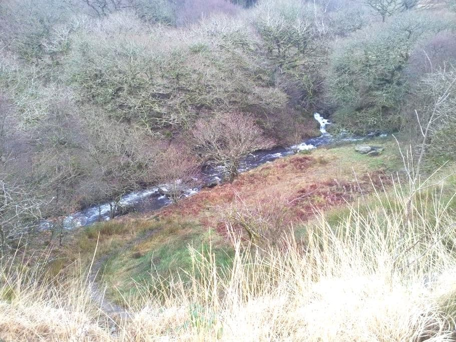 Welsh Mountain Cottage - Ysbyty Ystwyth - Hus