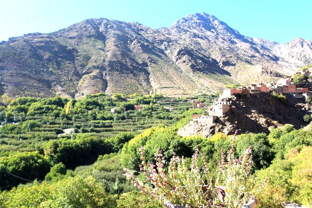 Imlil Atlas Mountain HomeStay - Imlil - Maison