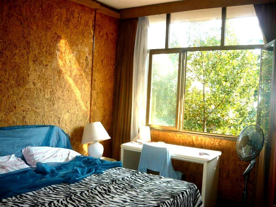 Centro Roma stanza con bagno privat - Roma - Leilighet
