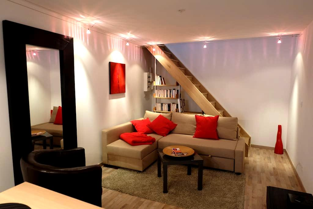 le grenier de malaucene - Malaucène - Apartment