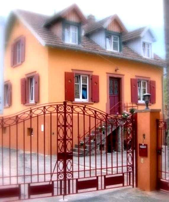 Au Relais Campagnard - Sélestat - Hus