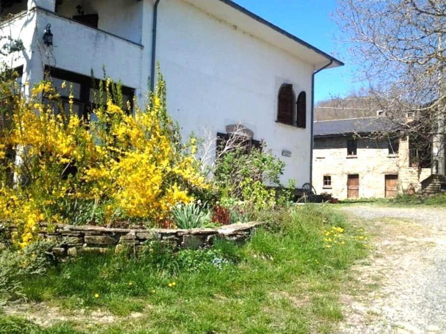 Agriturismo per amici degli animali - Borgo Val di Taro - Bed & Breakfast
