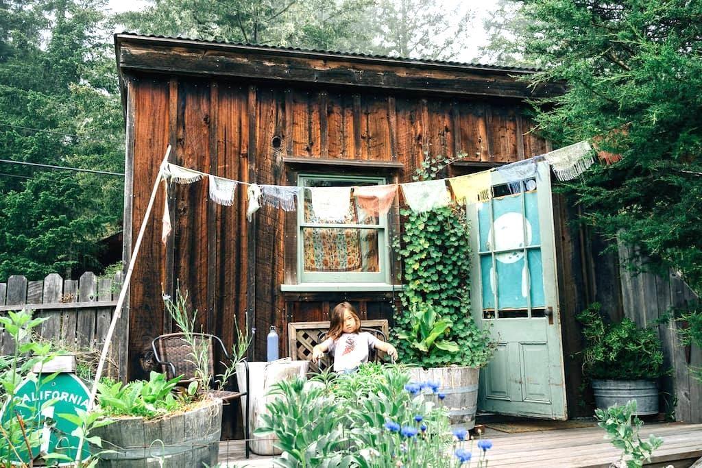 Sunlit Shanti - Little River - Houten huisje