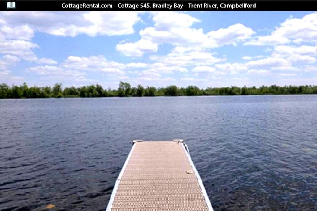 The Blue Roof Cottage - Campbellford - Kabin