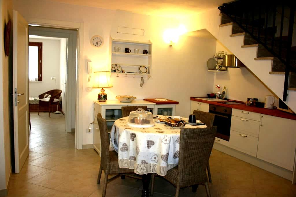 Indipendent apartment  Grosseto City 4 beds - Grosseto - Şehir evi