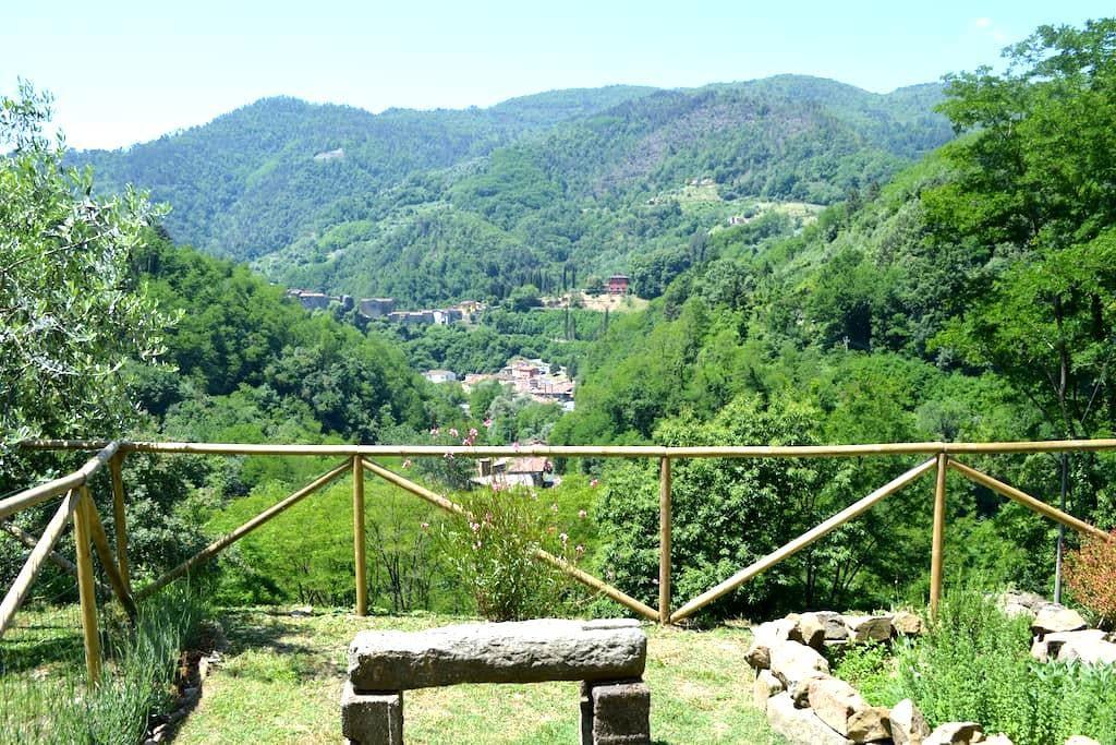 Tuscan olive farm apartment - Pescia - Apartment