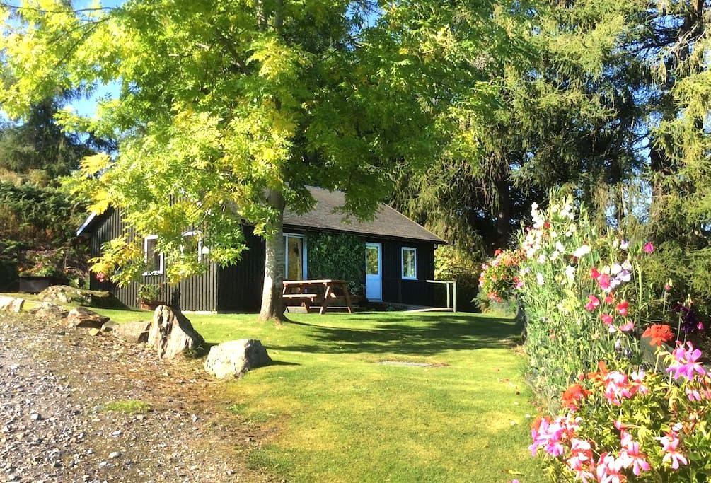 Rannoch Lodge - Aberfeldy - Aberfeldy - Cabin