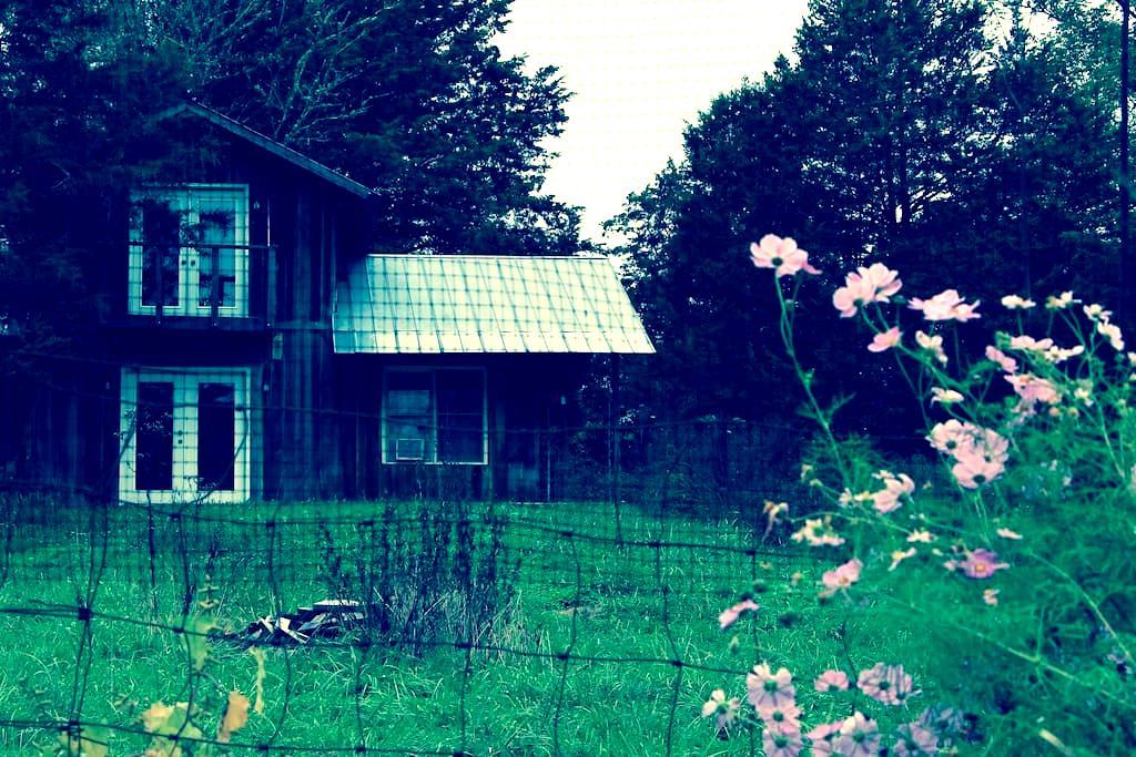 The Stables  Cottage - 伍德伯里(Woodbury) - 独立屋