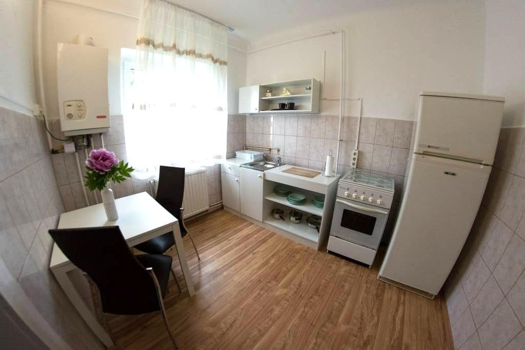 Ecaterina - Ultra Central Cozy & Silent Apartment - 브라쇼브(Brașov) - 아파트
