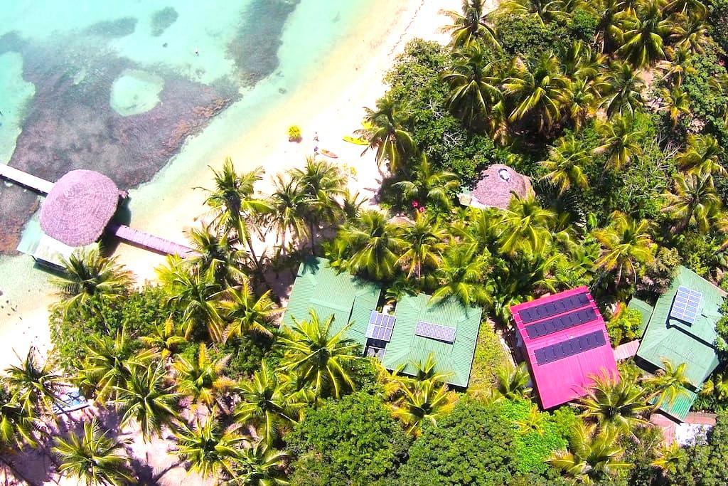 Casa Cayuco's Beach/Jungle Suite - RANA! - Punta Vieja