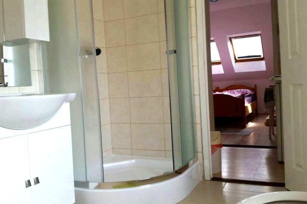 Li-Do Vendégház 1 szobás apartman - Balatonfüred - アパート