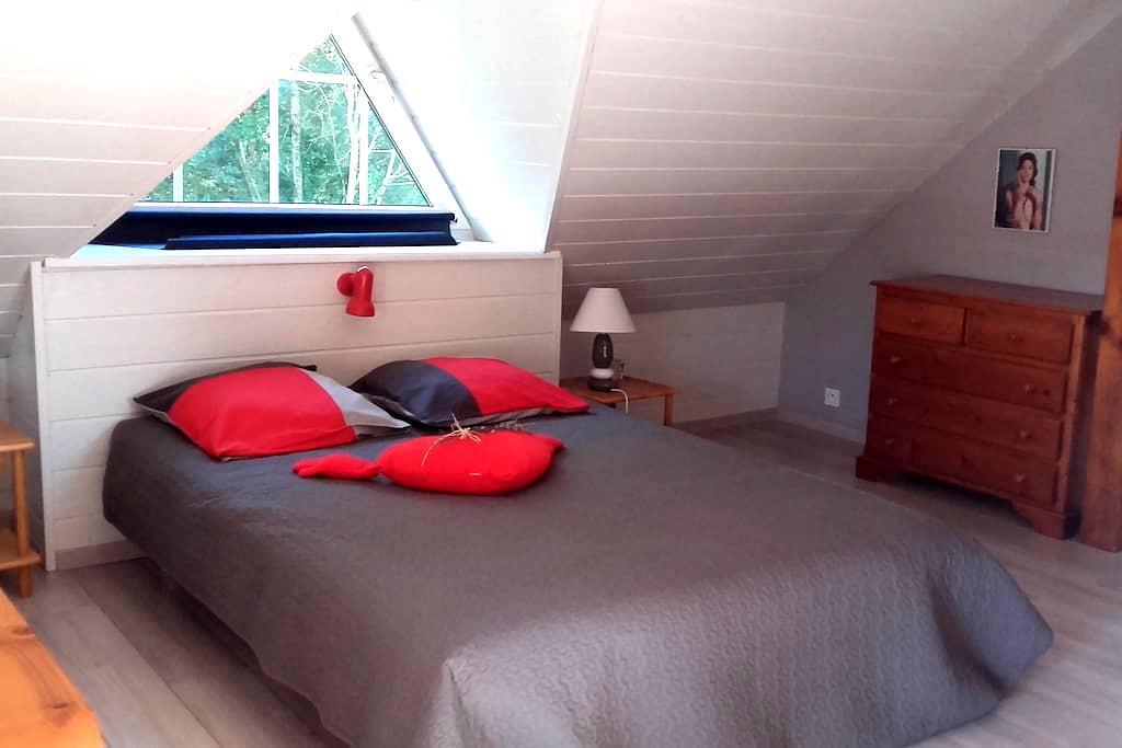 Studio avec terrasse en lisière de forêt - Holving, Alsace-Champagne-Ardenne-Lorraine, FR - Haus