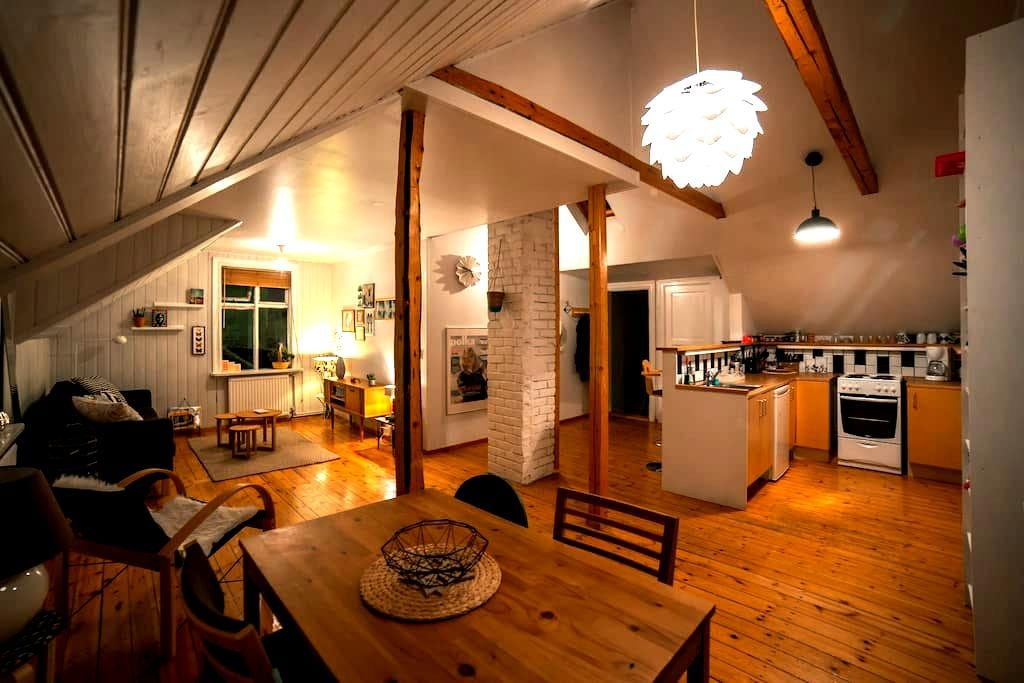 Cosy Apartment downtown Reykjavik - 레이캬비크