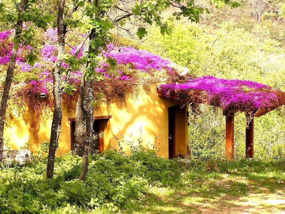 Apartamentos rurales Ecopangea  - Valverde de la Vera - Apartemen