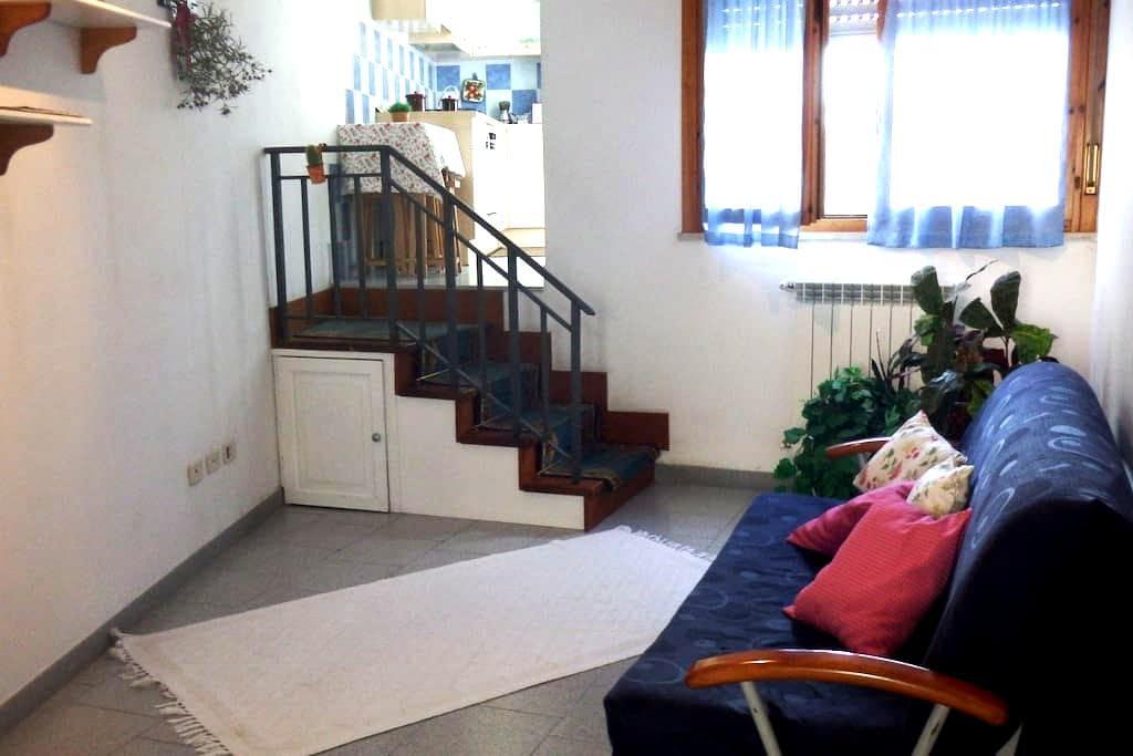 Confortevole monolocale in Maremma - Grosseto - Wohnung