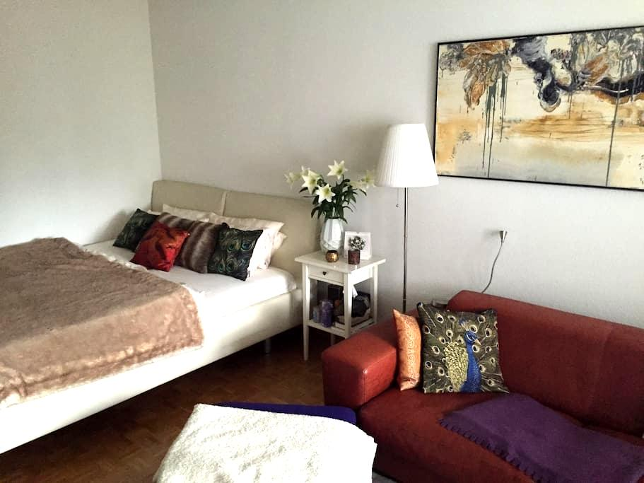 Cosy place with spacious terrace - Zürich - Appartement