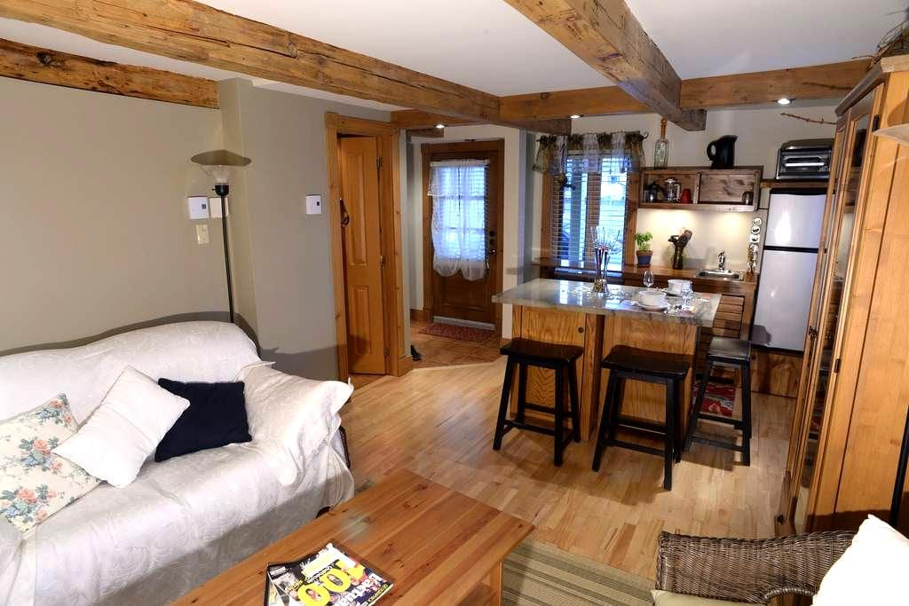 Zen stay in the heart of Old Lévis  - Lévis - Appartement