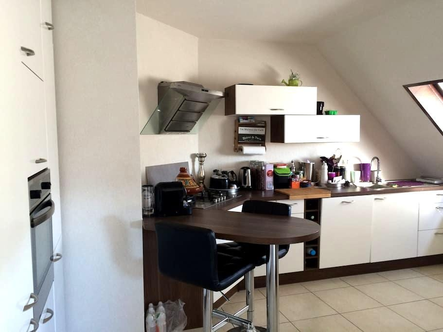 Appartement cosy et calme - Rixheim