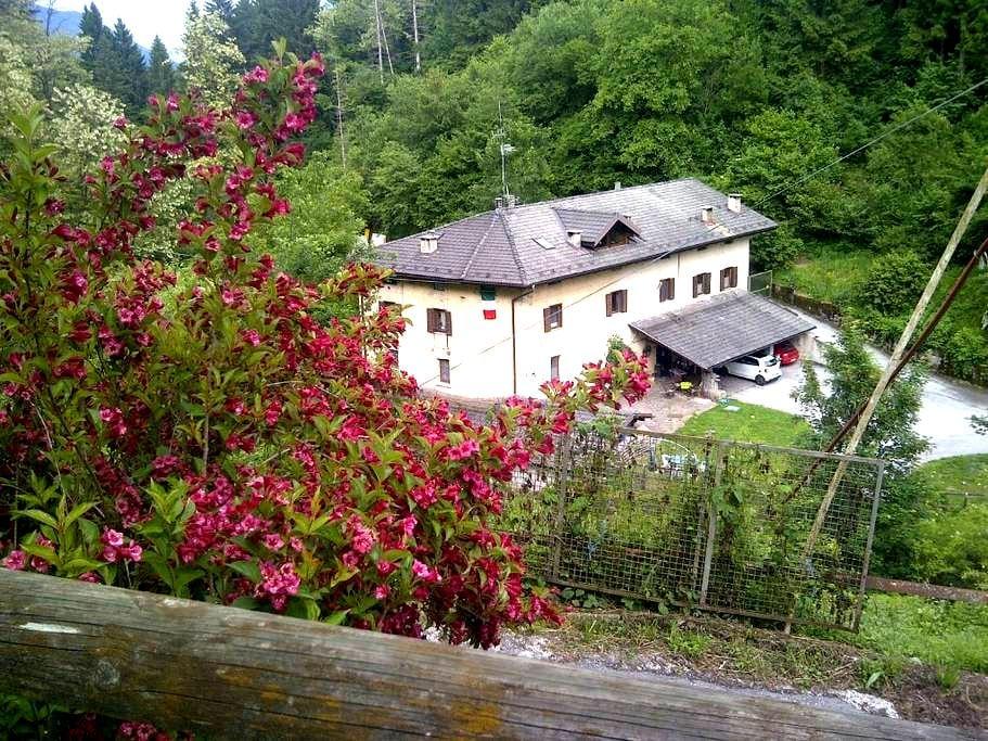 Appartamento in  Maso a mezza montagna in Trentino - Bosentino - Byt