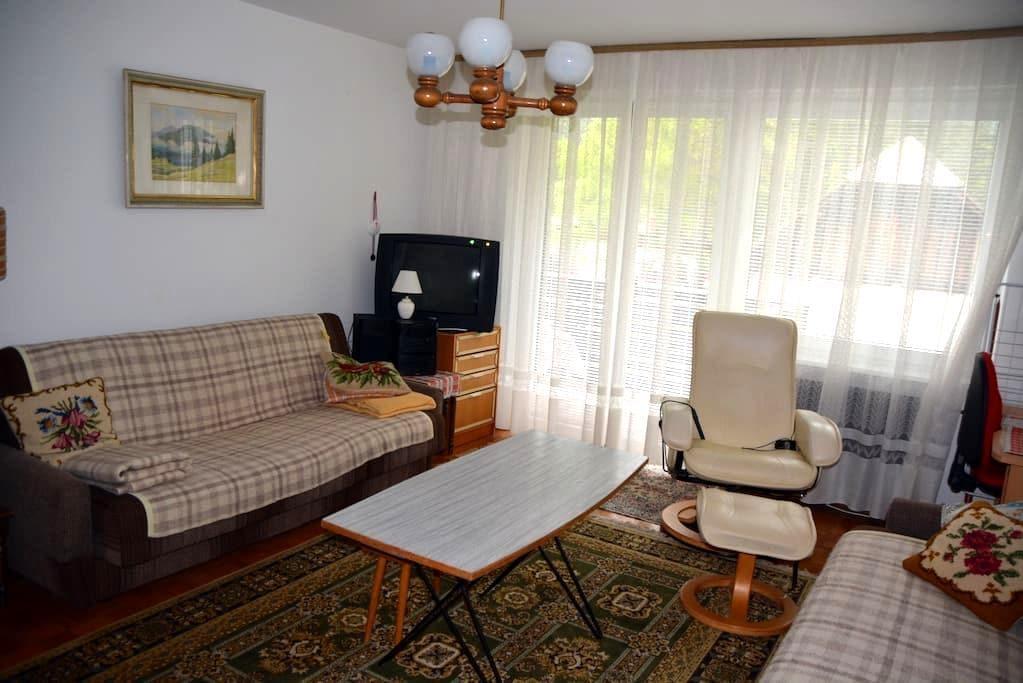 Apartment Mojstrana - Mojstrana - อพาร์ทเมนท์