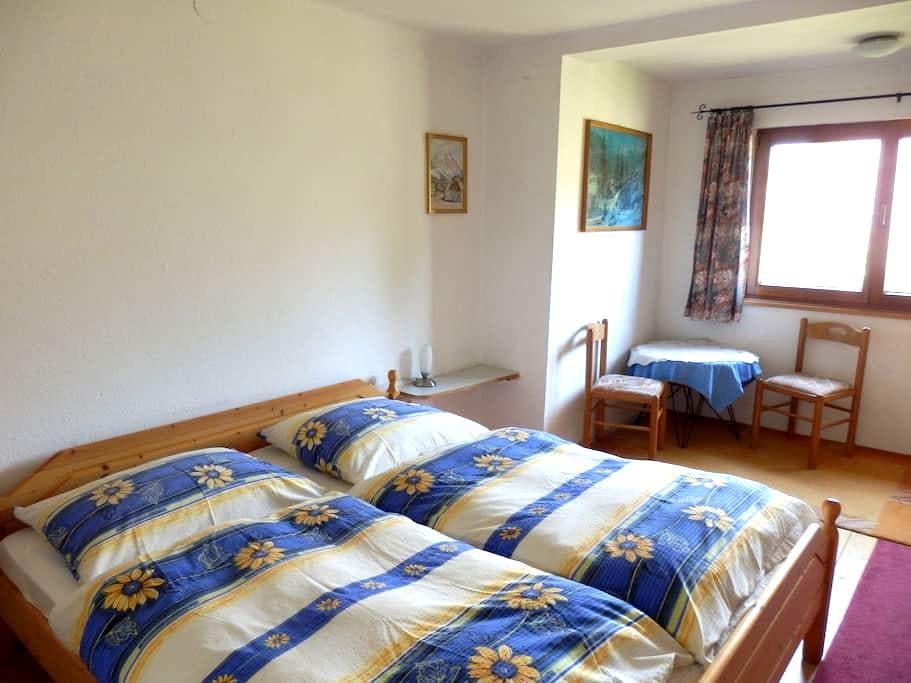 Haus Steinwidder - room nr. 3 - breakfast included - Bad Aussee - Bed & Breakfast