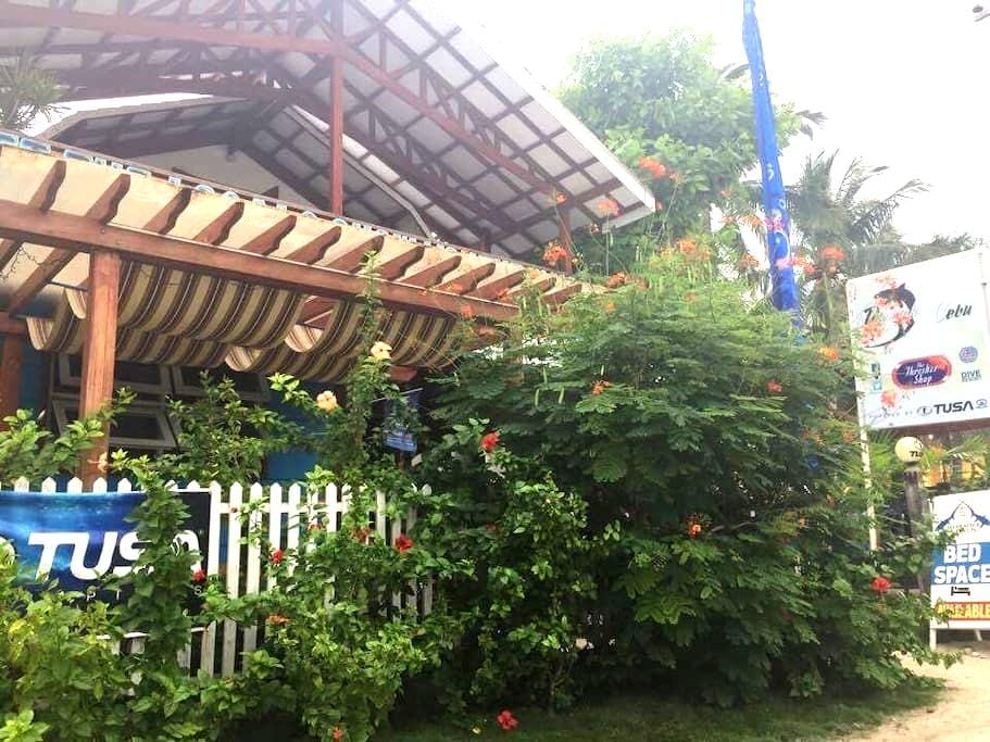 Comfy B&B in Green Room @Diveshop - Daanbantayan - Dortoir