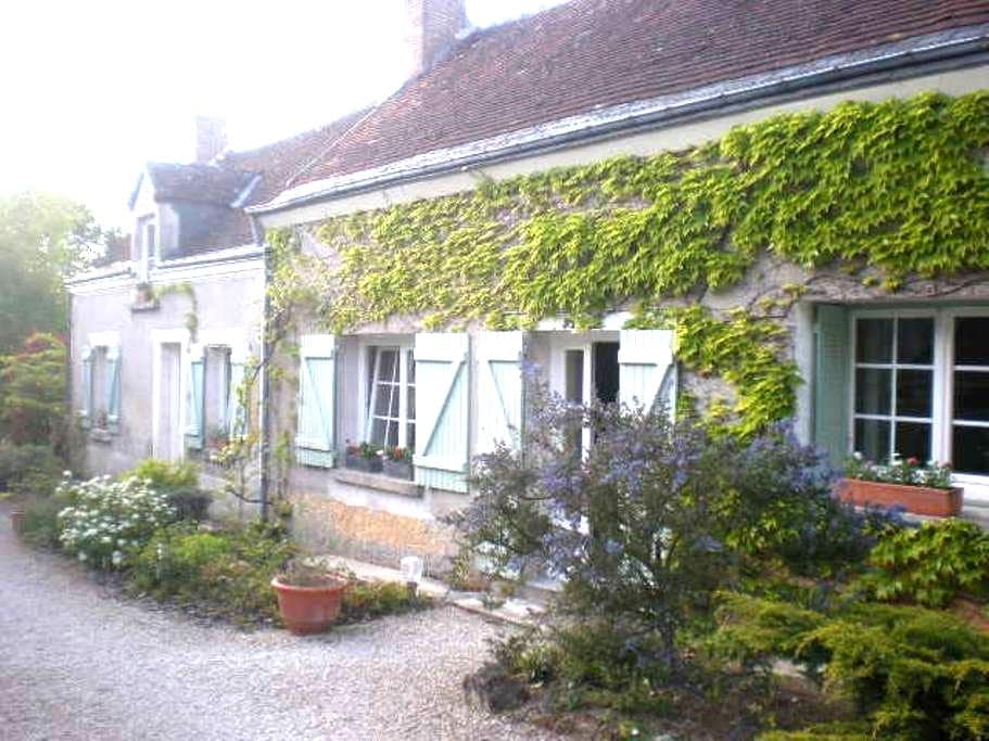 the 156  - Saint-Georges-sur-Cher - Bed & Breakfast