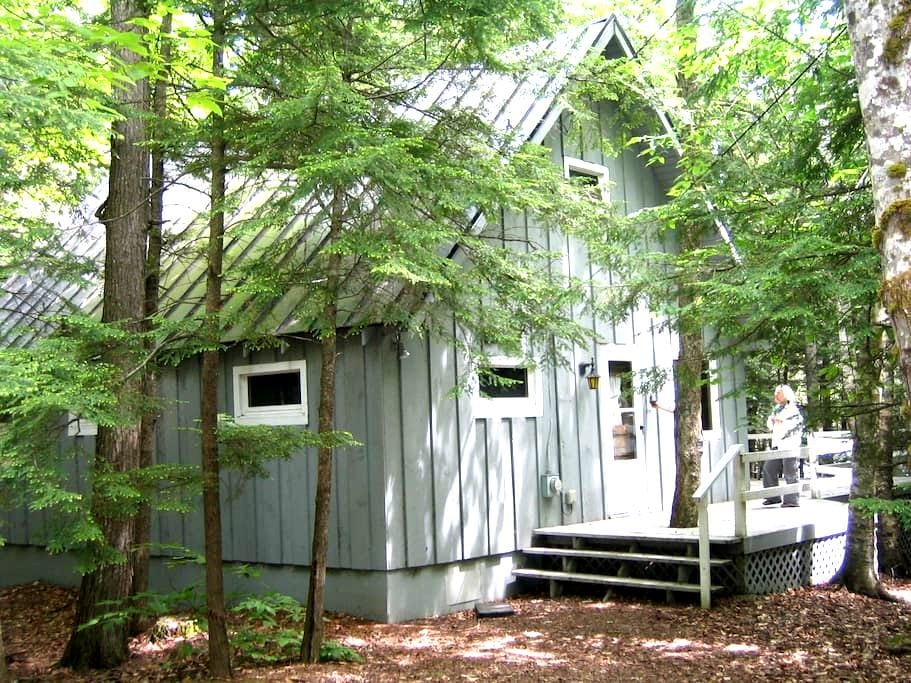 Cozy Lakefront Cabin in Freedom, ME - Freedom - Hytte