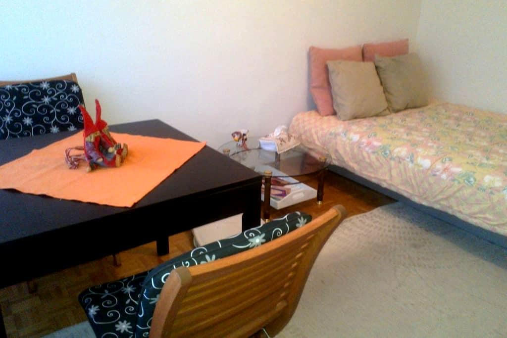 Nice Big Room by the River Rhone - Genève - Apartment