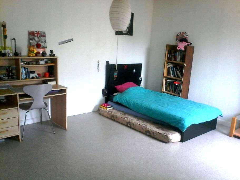 Grande chambre dans bel appartement Annonay centre - Annonay - Lägenhet