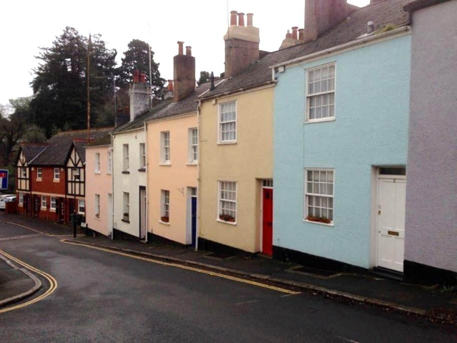 Grade 2 listed terrace - Exeter - Dom