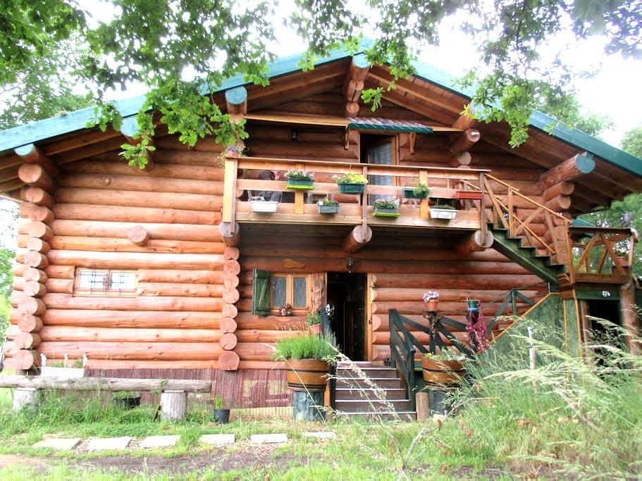 Maison en rondins de bois à la campagne girondine. - Belin-Béliet - Chalé