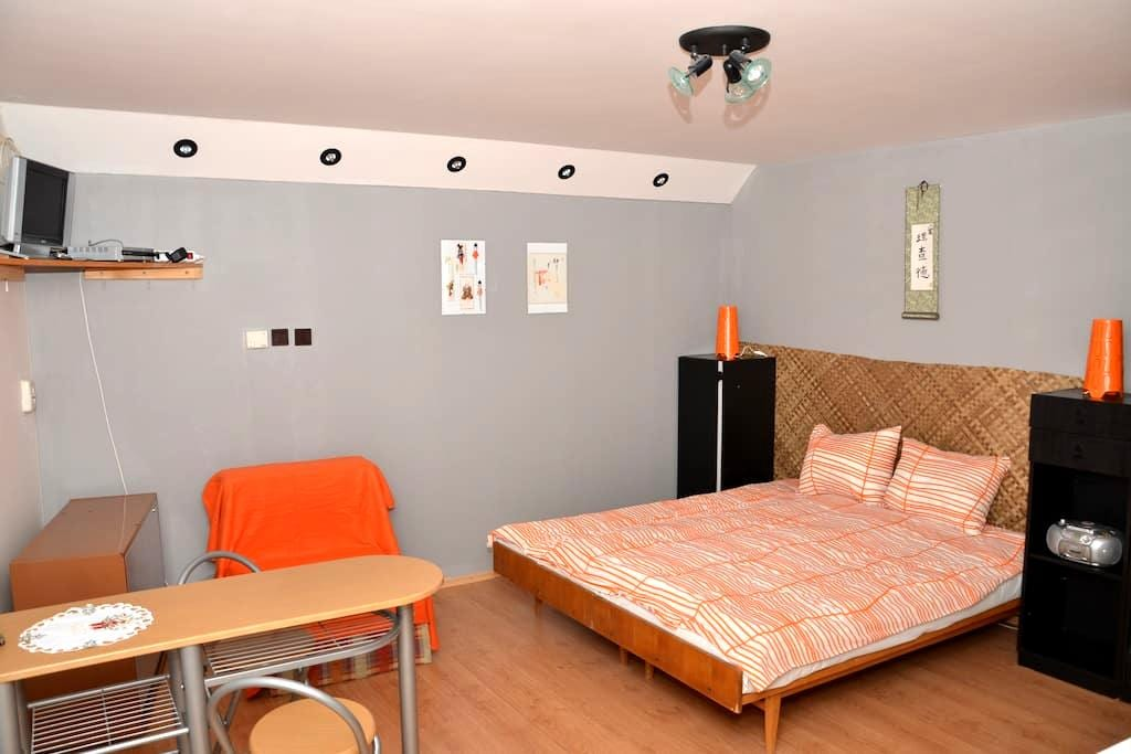 Lovely apartment in heart of Liptov - Závažná Poruba - Daire