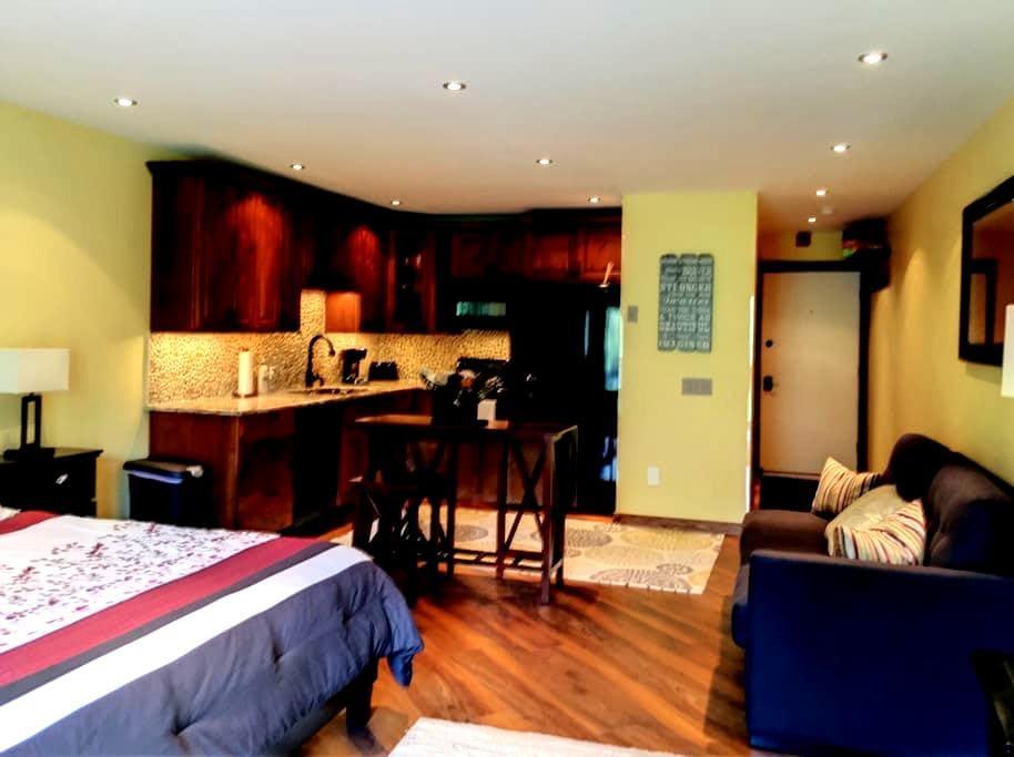 RiverRock, studio condo in Girdwood, AK - Anchorage - Appartement en résidence