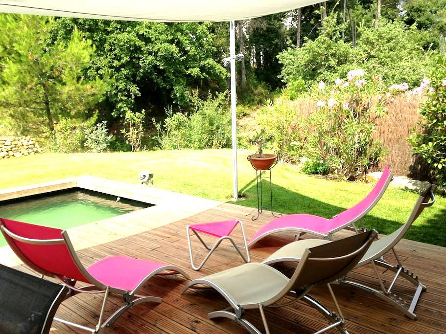 Maison avec sa piscine naturelle - Fuveau