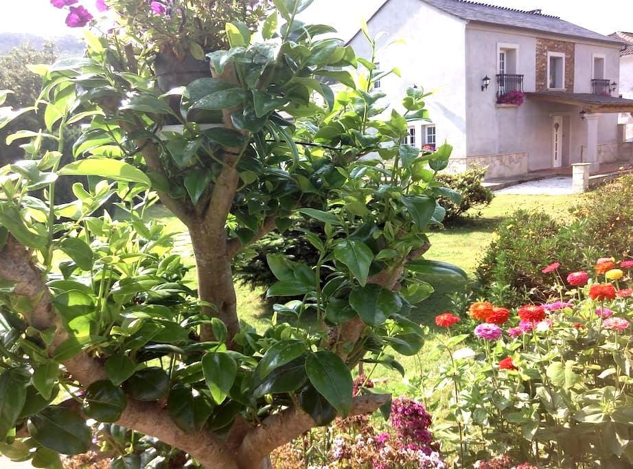 Pousada Carballo Blanco (Barreiros) - Celeiro de Mariñaos, Barreiros - House