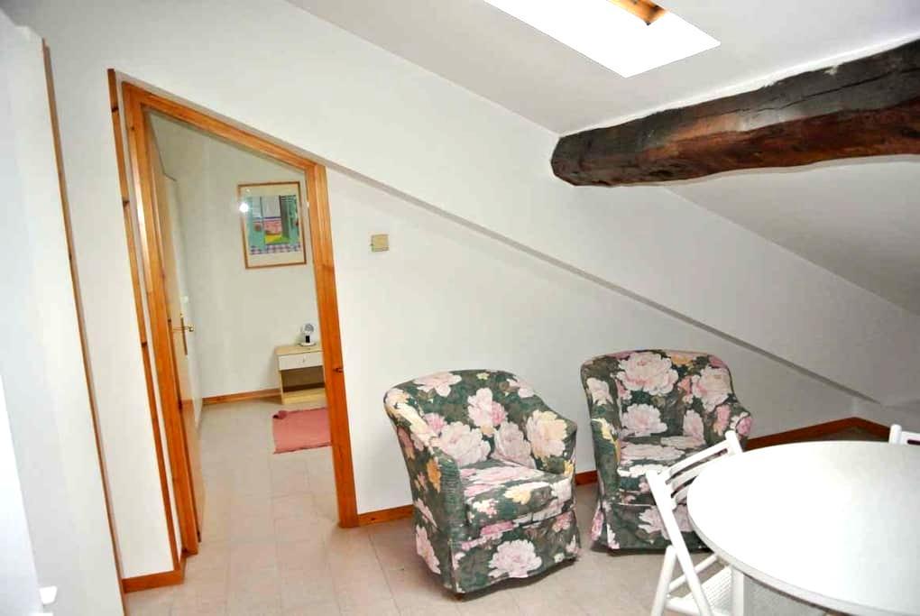 Mansarda  bilocale in centro città - Pordenone - Apartment
