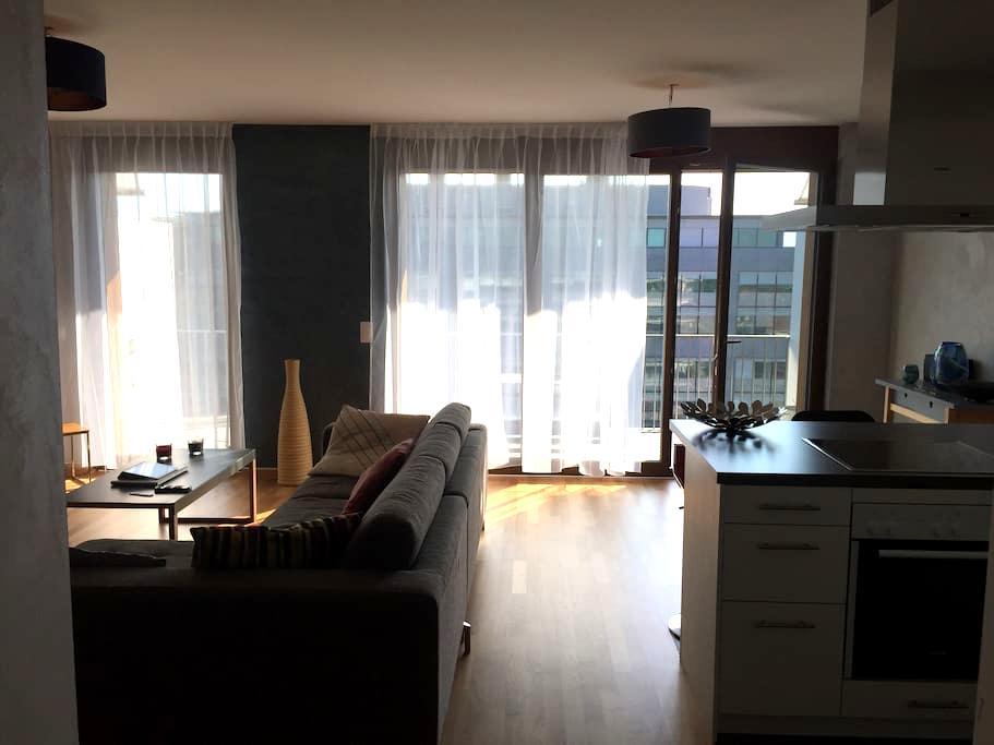 Chambre à louer - Room for rent - Ginebra - Departamento