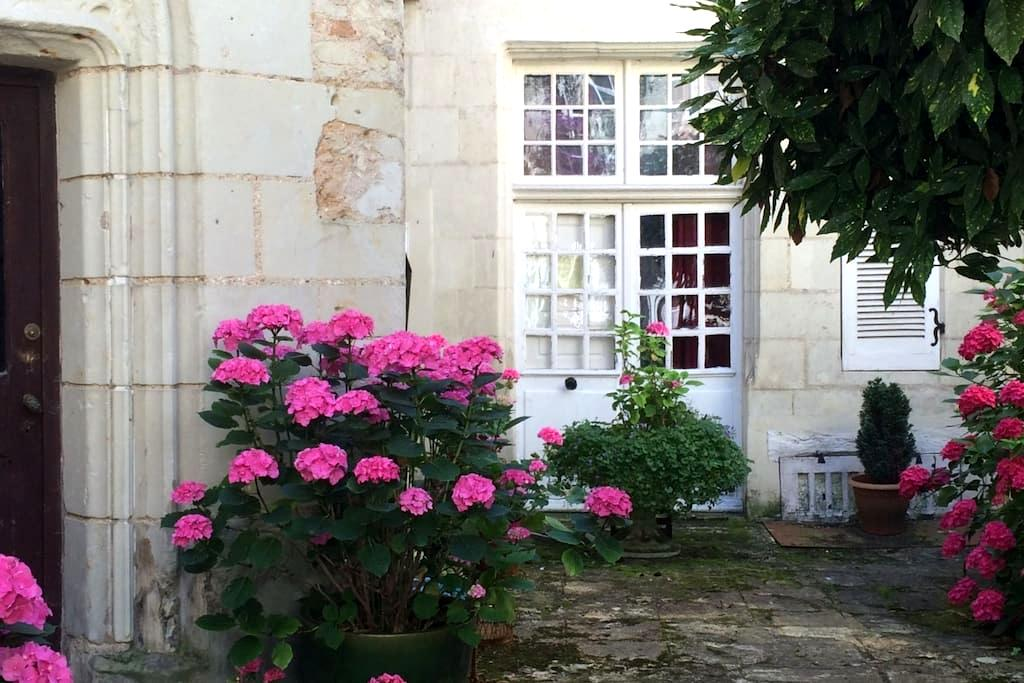 ENCHANTING, HISTORIC CHINON APT. - Chinon - Wohnung